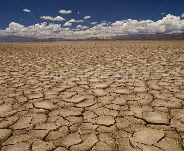 засуха большой области земле долго Сток-фото © antonprado