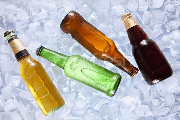 Chłodzenie cztery inny butelek piwa lodu Zdjęcia stock © antonprado