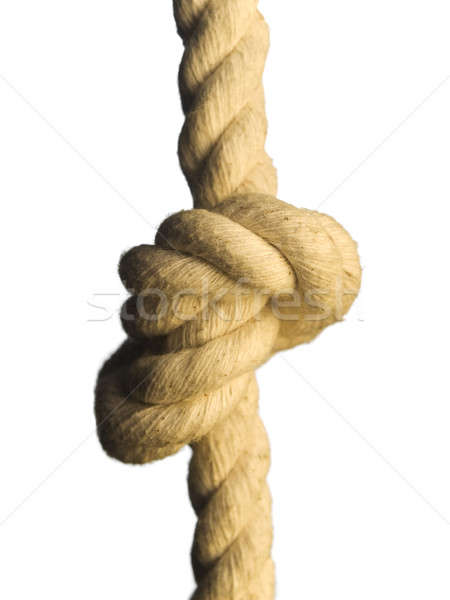 Knot on the rope Stock photo © antonprado