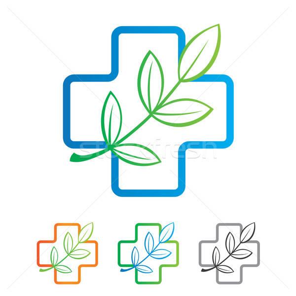 шаблон знак природного продукт здоровья цвета Сток-фото © antoshkaforever