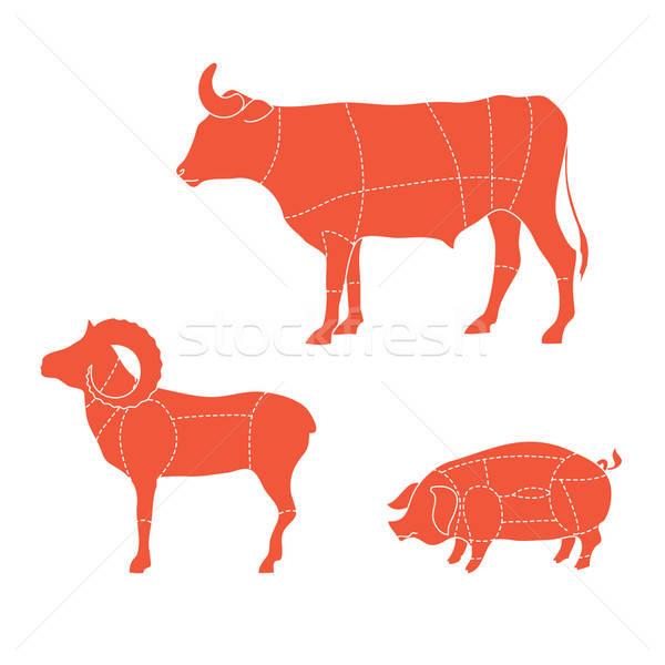 шаблон Cut мяса коров свиней Сток-фото © antoshkaforever