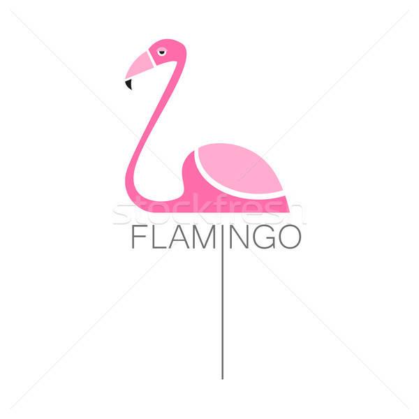 Flamingó madár felirat logo izolált fehér Stock fotó © antoshkaforever