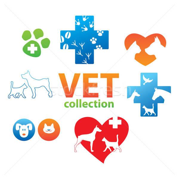 Coleção ícones veterinário medicina cão médico Foto stock © antoshkaforever