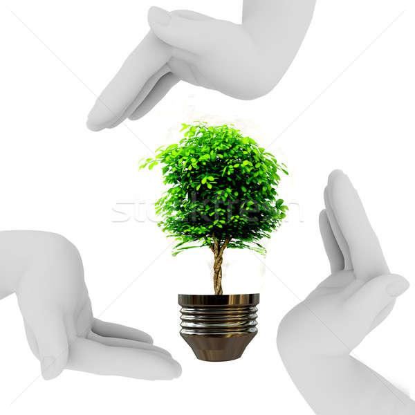 árbol bombilla manos forma triángulo Foto stock © anyunoff