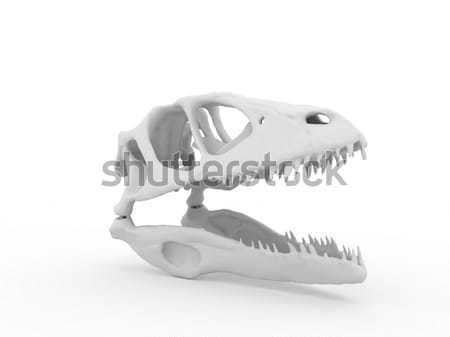 Dinosaur head Stock photo © anyunoff