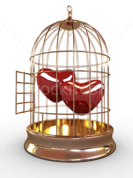 Dos corazones rojo dorado jaula aislado Foto stock © anyunoff