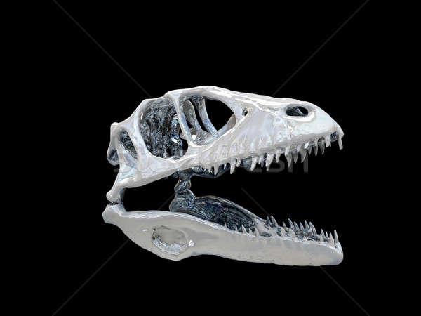 Dinosaur head Stock photo © anyunoff