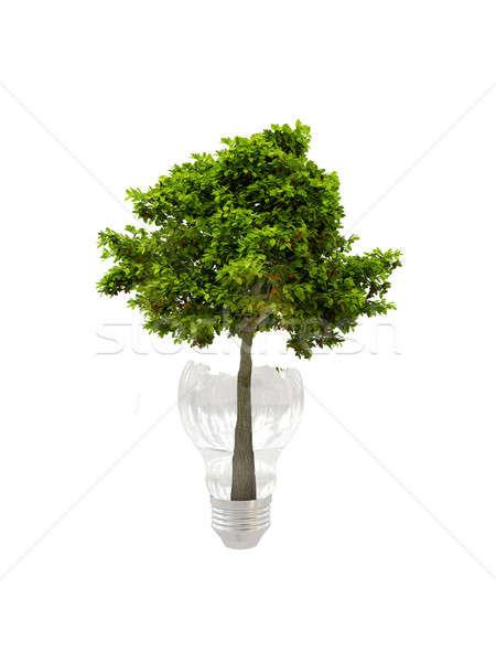árbol bombilla vidrio blanco hoja verde Foto stock © anyunoff