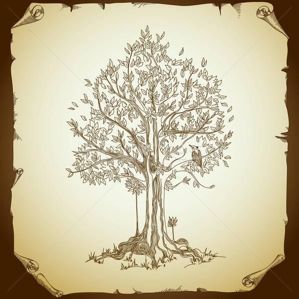 古い紙 図面 ツリー 花 テクスチャ 自然 ストックフォト © Aqua