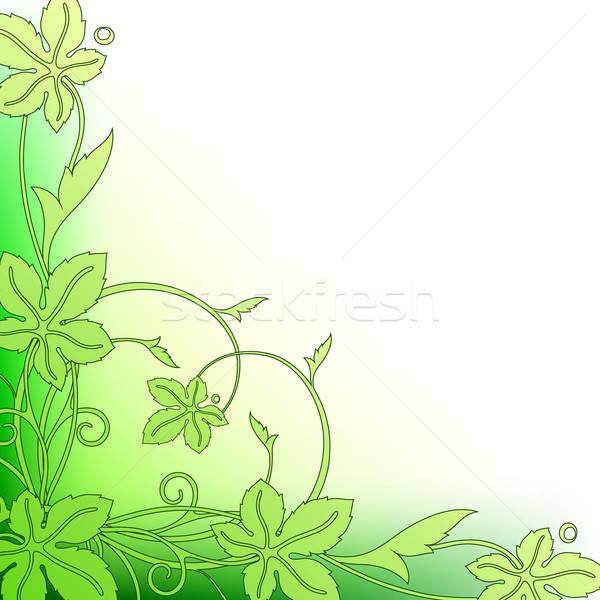 floral background Stock photo © Aqua