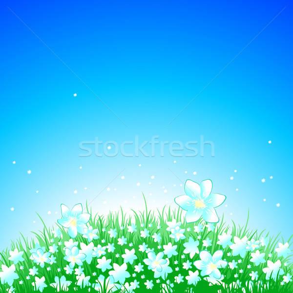 Verão ilustração útil estilista trabalhar céu Foto stock © Aqua