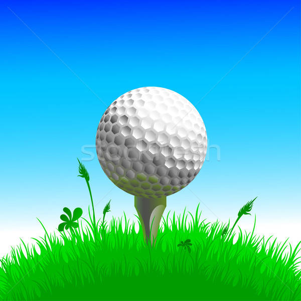 Golf herbe illustration utile designer travaux Photo stock © Aqua