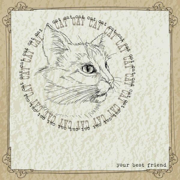 猫 頭 パターン フレーム 壁 カード ストックフォト © Aqua