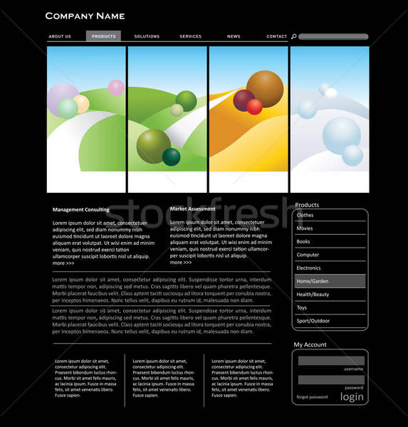Website template concept Stock photo © archymeder