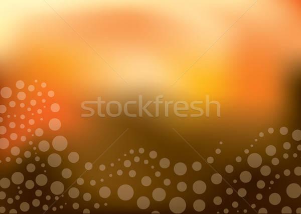 Resumen presentación vector formato negocios Foto stock © archymeder