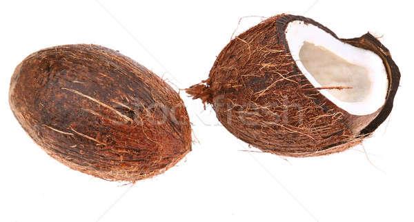 coconut Stock photo © arcoss