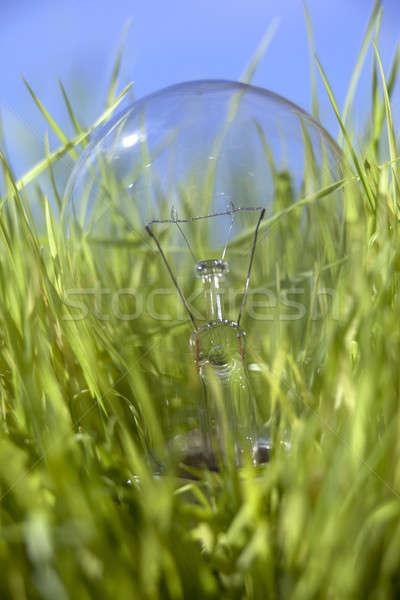 light bulb on a fresh grass  Stock photo © arcoss