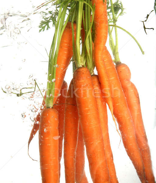 carrot Stock photo © arcoss