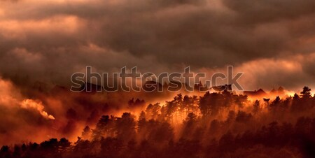 Landscape Stock photo © arcoss