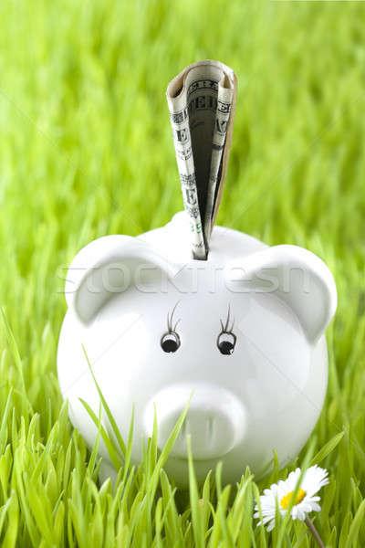 Piggy bank on grass with money Stock photo © arcoss
