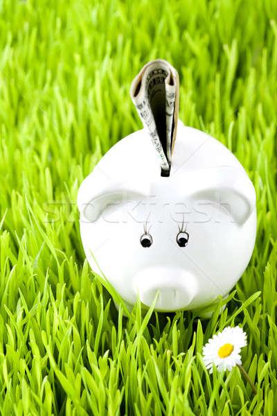 Banku piggy trawy ceny działalności niebo tle Zdjęcia stock © arcoss