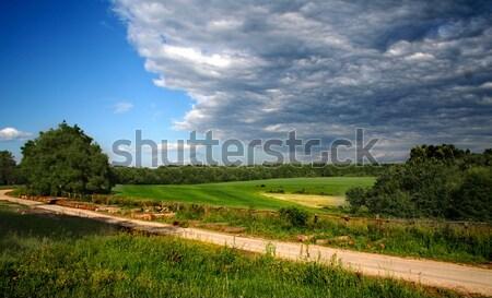 Land Stock photo © arcoss