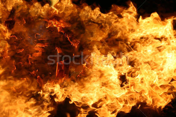 fire and flames on a black background  Stock photo © arcoss