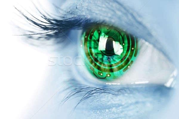 eye iris and electronic circuit Stock photo © arcoss