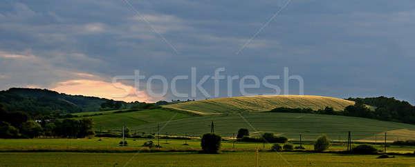 Textuur zon natuur landschap zomer veld Stockfoto © arcoss