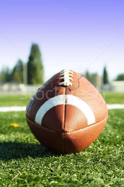 Football terrain de football balle Photo stock © aremafoto