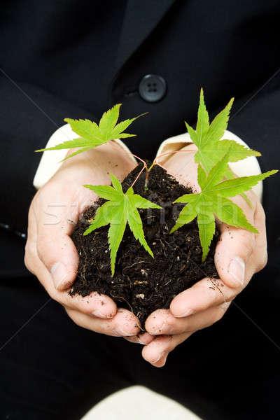 Stockfoto: Business · shot · zakenman · nieuwe · plant