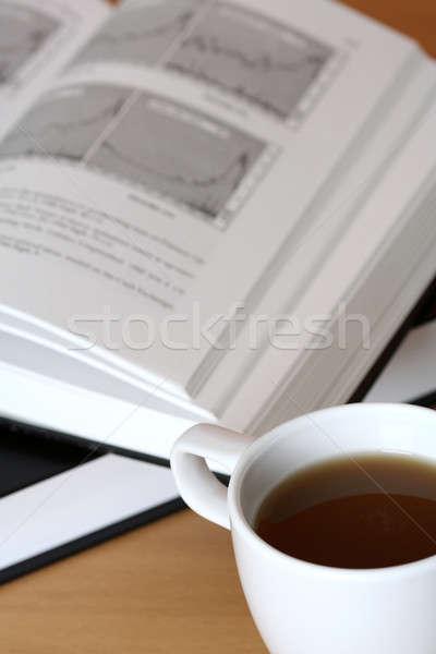 Investment Stock photo © aremafoto