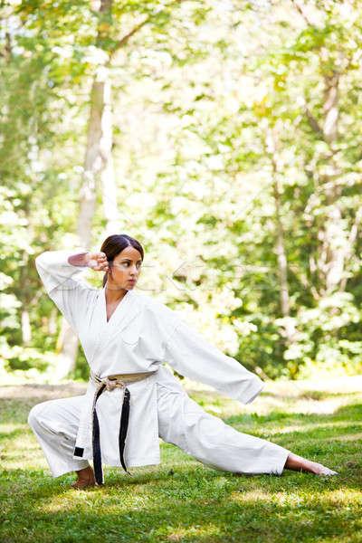 ázsiai gyakorol karate lövés nő lány Stock fotó © aremafoto