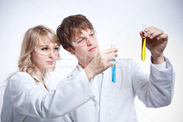Working scientists Stock photo © aremafoto