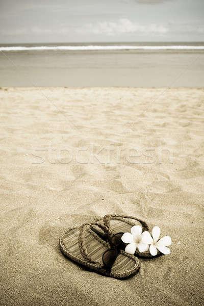 Stok fotoğraf: Plaj · tatil · çift · sandalet · gözlük · çiçekler