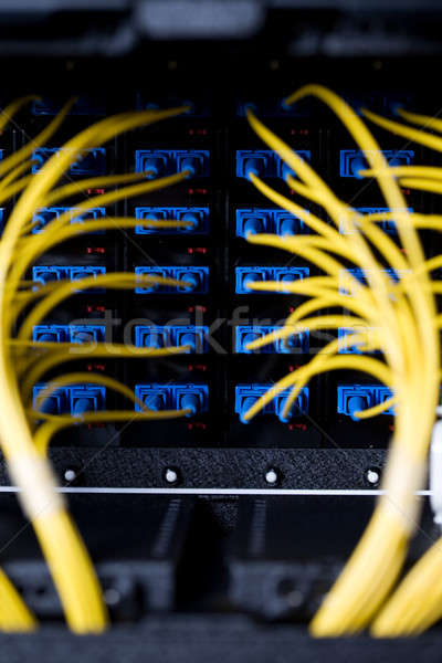 Network cables Stock photo © aremafoto