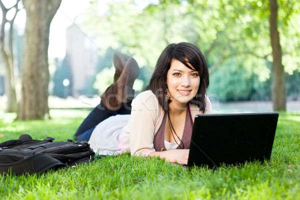 Stock foto: Laptop · Gras · arbeiten