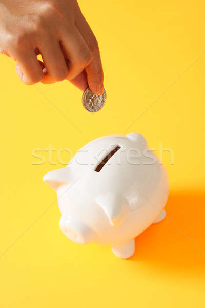 Donna moneta salvadanaio mani Foto d'archivio © aremafoto