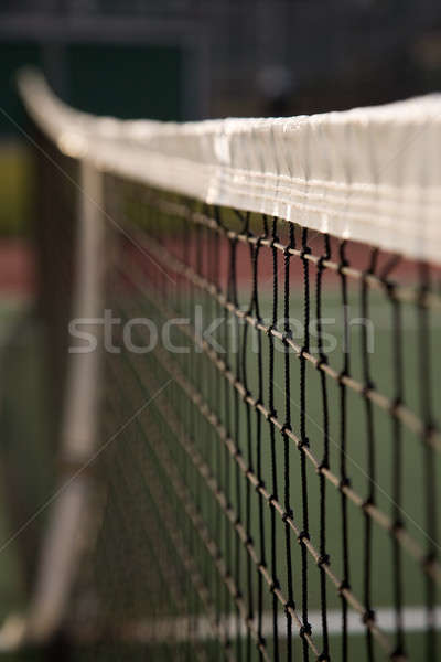 Foto d'archivio: Campo · da · tennis · shot · net · poco · profondo