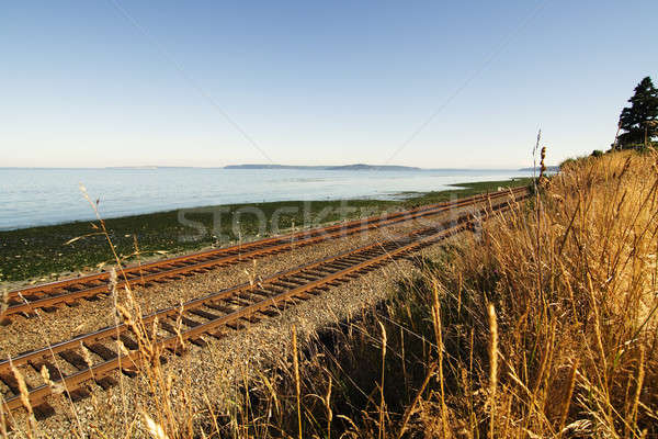 Railroad tracks Stock photo © aremafoto
