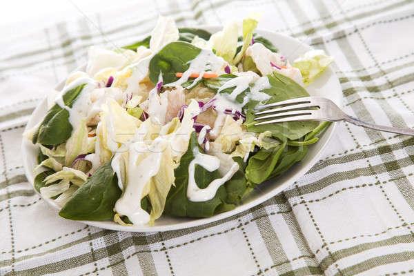 Salad with dressing Stock photo © aremafoto