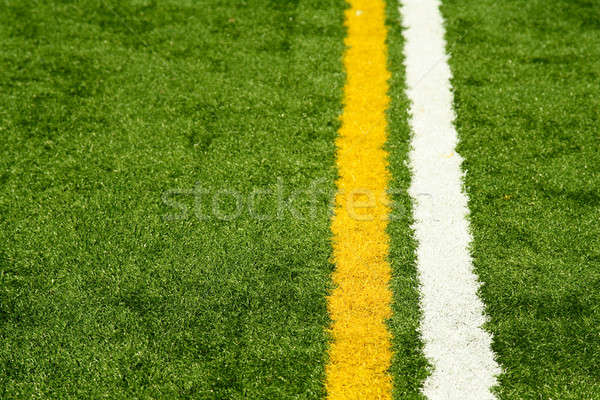 Artificial turf Stock photo © aremafoto