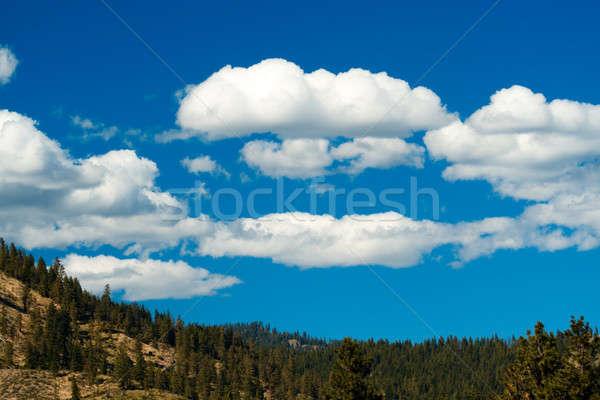 Beautiful scenery Stock photo © aremafoto