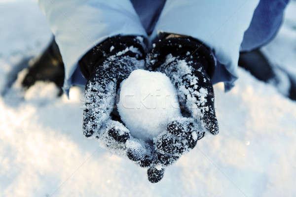 Winter fun Stock photo © aremafoto