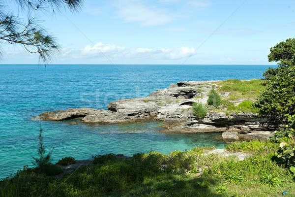 Sahil kaya su mavi tropikal Stok fotoğraf © arenacreative