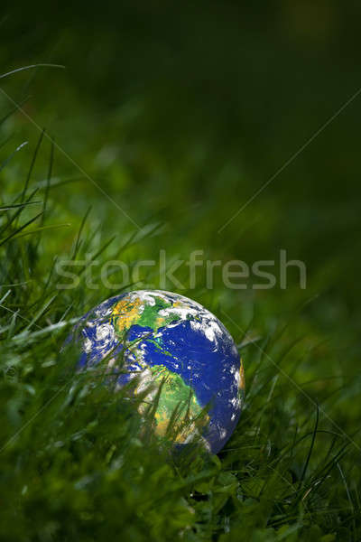 Green Earth Concept Stock photo © ArenaCreative
