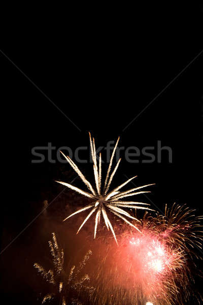 Beautiful Fireworks Stock photo © ArenaCreative