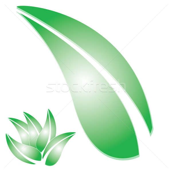 Green Leaf Stock photo © ArenaCreative