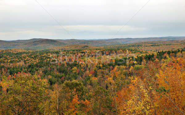 Hogback Mountain Stock photo © ArenaCreative