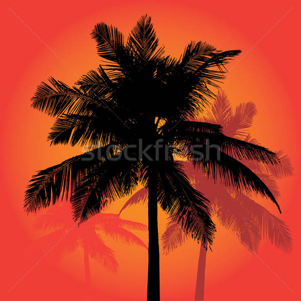 Palm Tree Sunset Silhouettes Vector Trio Stock photo © ArenaCreative